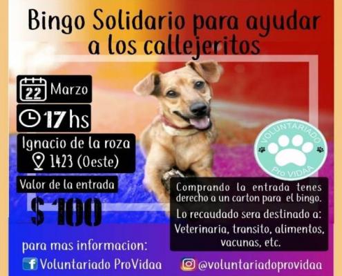voluntariado pro vidaa bingo marzo 2020